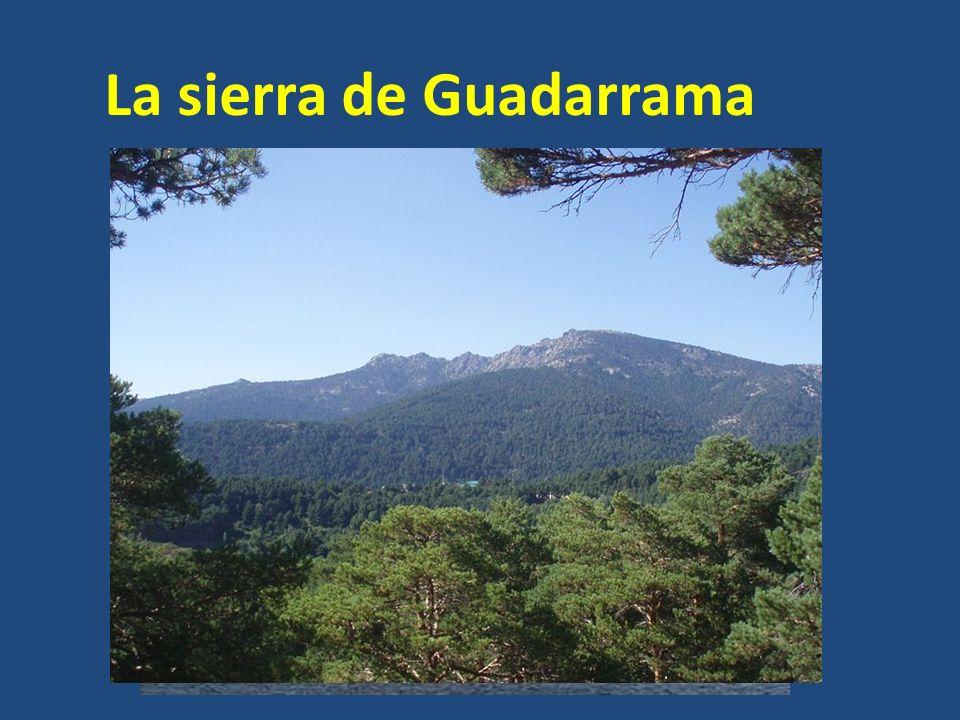 La sierra de Guadarrama Los picos más importantes son: La Maliciosa (2.227 m) Siete Picos (2.138 m)
