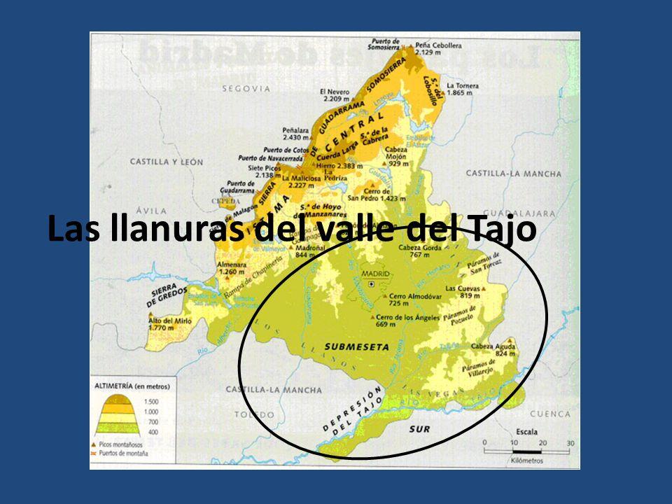 Las llanuras del valle del Tajo