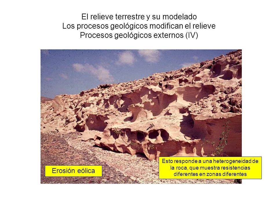 El relieve terrestre y su modelado Los procesos geológicos modifican el relieve Procesos geológicos externos (IV) Erosión eólica Esto responde a una h