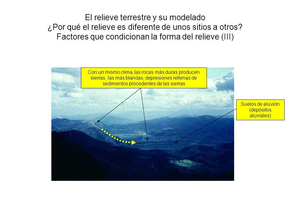 El relieve terrestre y su modelado ¿Por qué el relieve es diferente de unos sitios a otros? Factores que condicionan la forma del relieve (III) Con un