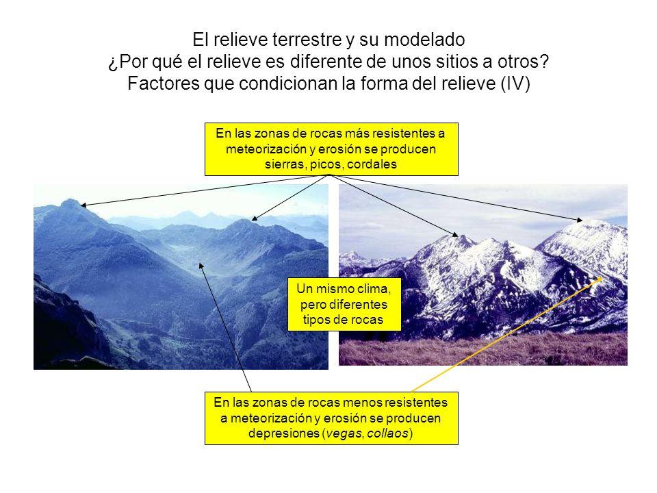 El relieve terrestre y su modelado ¿Por qué el relieve es diferente de unos sitios a otros? Factores que condicionan la forma del relieve (IV) Un mism