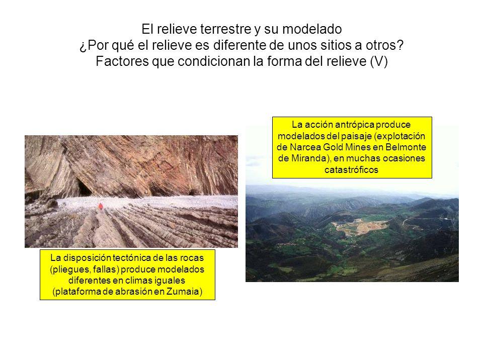 El relieve terrestre y su modelado ¿Por qué el relieve es diferente de unos sitios a otros? Factores que condicionan la forma del relieve (V) La dispo