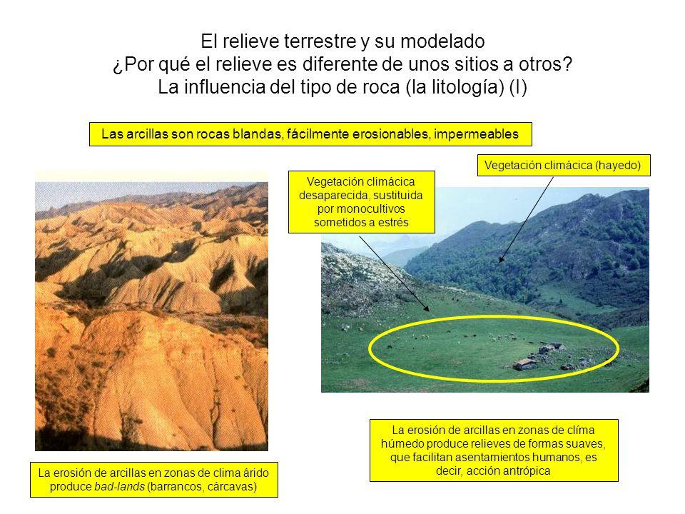 El relieve terrestre y su modelado ¿Por qué el relieve es diferente de unos sitios a otros? La influencia del tipo de roca (la litología) (I) Las arci