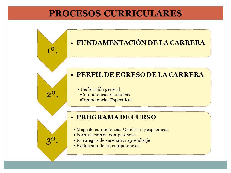 1º. FUNDAMENTACIÓN DE LA CARRERA 2º. PERFIL DE EGRESO DE LA CARRERA Declaración general Competencias Genéricas Competencias Específicas 3º. PROGRAMA D