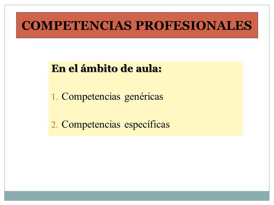 COMPETENCIAS PROFESIONALES En el ámbito de aula: 1. Competencias genéricas 2. Competencias específicas