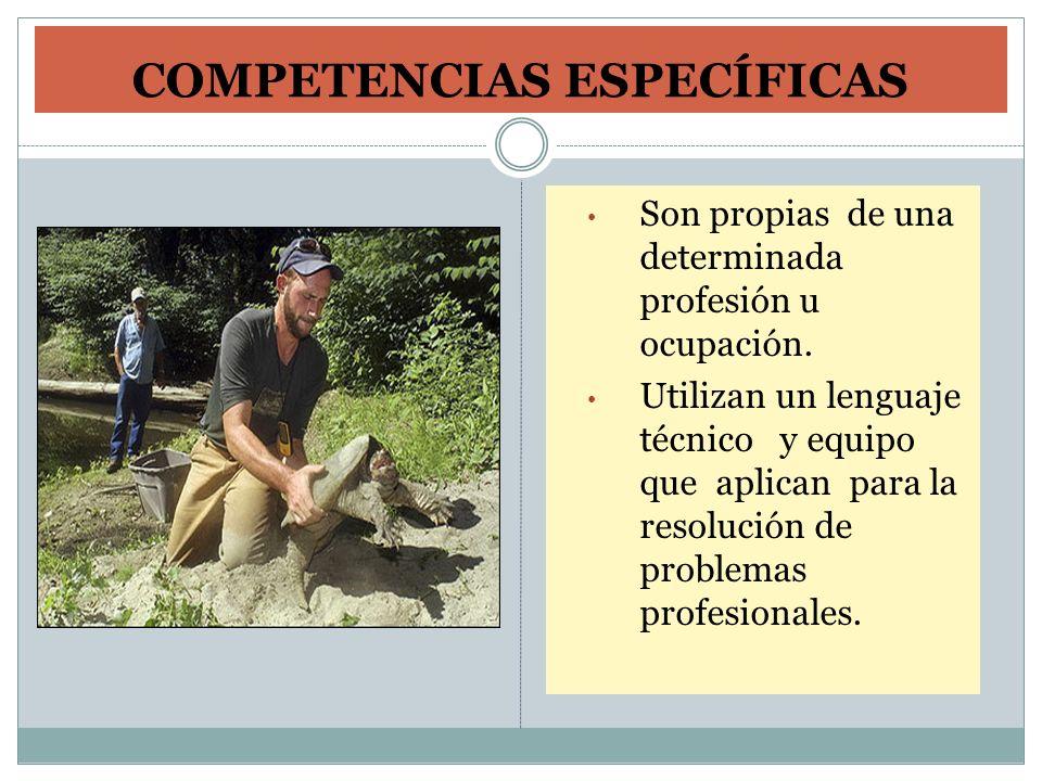 COMPETENCIAS ESPECÍFICAS Son propias de una determinada profesión u ocupación. Utilizan un lenguaje técnico y equipo que aplican para la resolución de