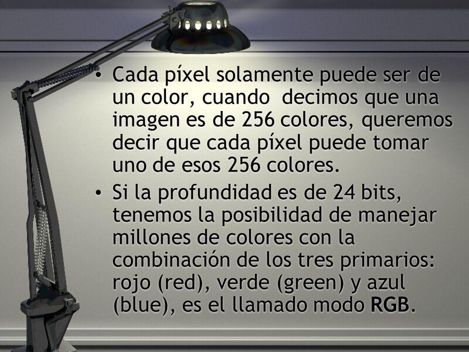 Cada píxel solamente puede ser de un color, cuando decimos que una imagen es de 256 colores, queremos decir que cada píxel puede tomar uno de esos 256