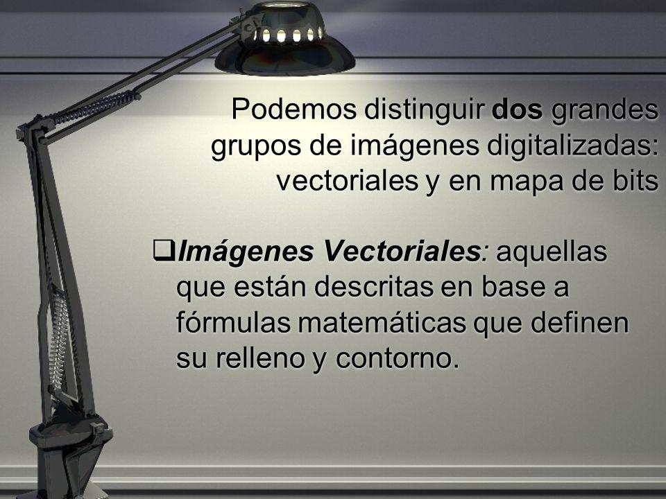 Podemos distinguir dos grandes grupos de imágenes digitalizadas: vectoriales y en mapa de bits Imágenes Vectoriales: aquellas que están descritas en b