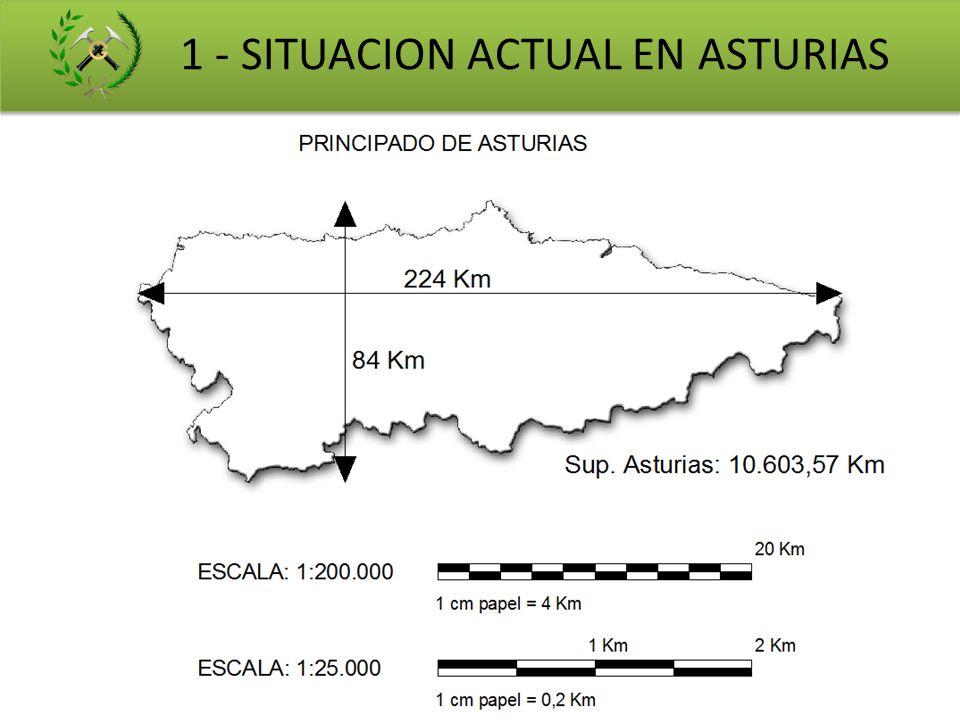 1 - SITUACION ACTUAL EN ASTURIAS