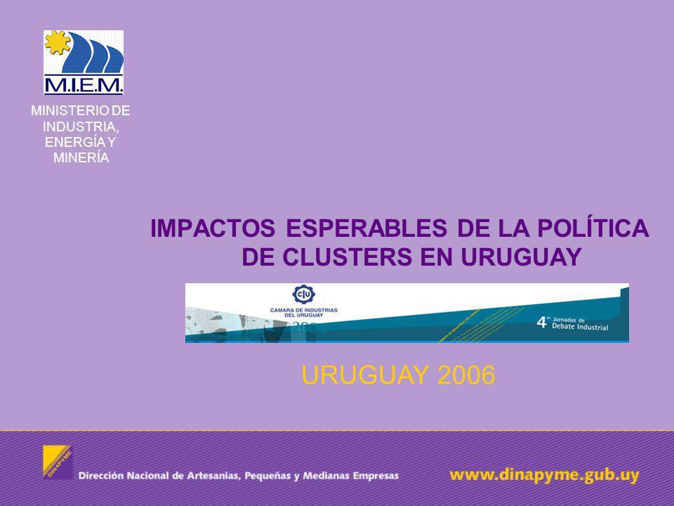 IMPACTOS ESPERABLES DE LA POLÍTICA DE CLUSTERS EN URUGUAY URUGUAY 2006 MINISTERIO DE INDUSTRIA, ENERGÍA Y MINERÍA