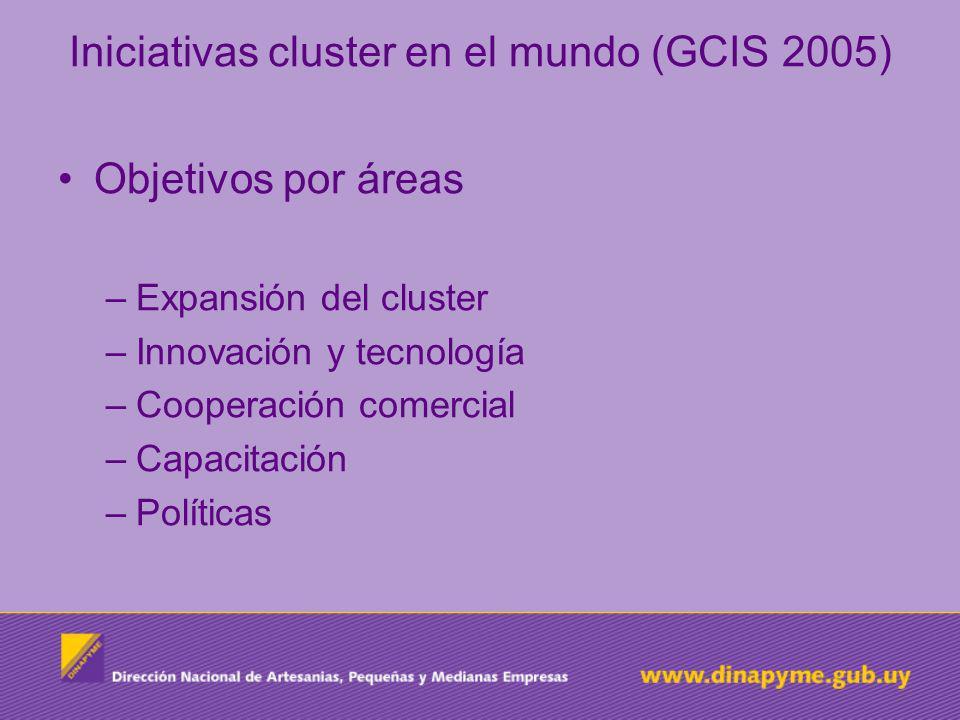 Iniciativas cluster en el mundo (GCIS 2005) Objetivos por áreas –Expansión del cluster –Innovación y tecnología –Cooperación comercial –Capacitación –