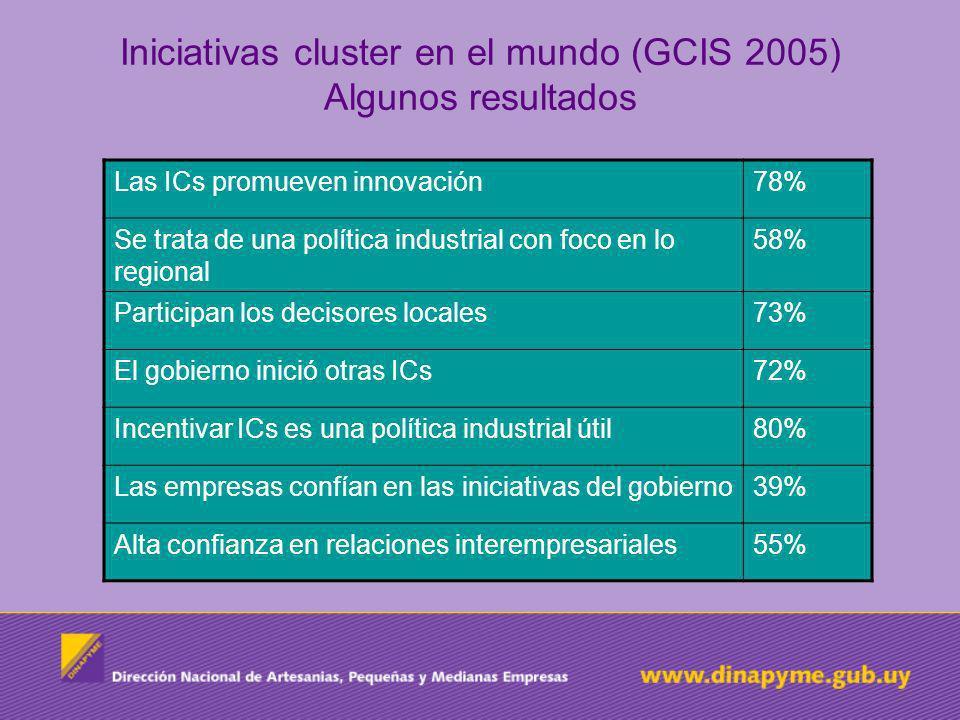 Iniciativas cluster en el mundo (GCIS 2005) Algunos resultados Las ICs promueven innovación78% Se trata de una política industrial con foco en lo regi