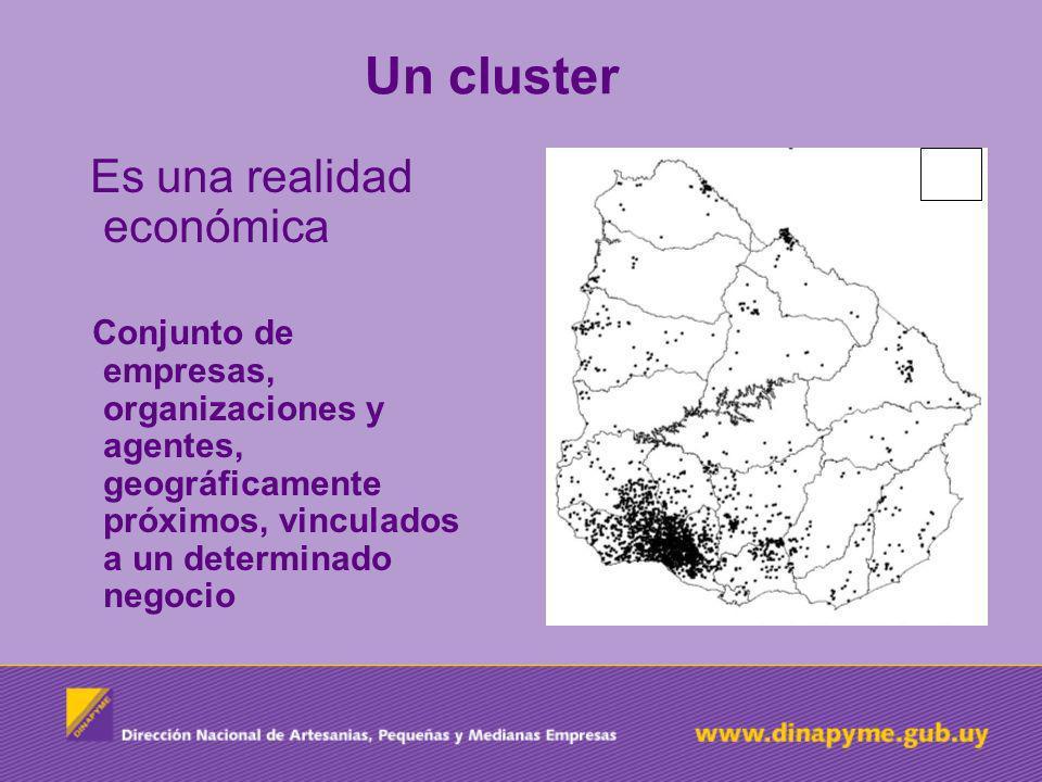 Una iniciativa cluster … Es una estructura de trabajo basado en la cooperación entre los distintos actores (privados y públicos) vinculados con la mejora de la competitividad de las empresas (entorno microeconómico) que forman el cluster