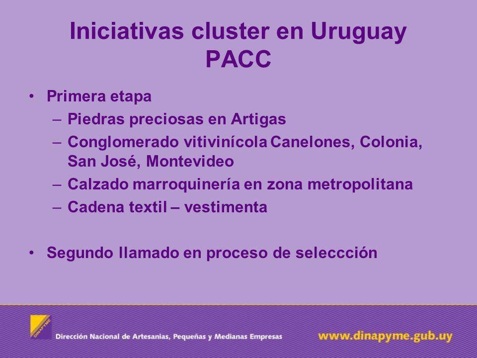 Iniciativas cluster en Uruguay PACC Primera etapa –Piedras preciosas en Artigas –Conglomerado vitivinícola Canelones, Colonia, San José, Montevideo –C
