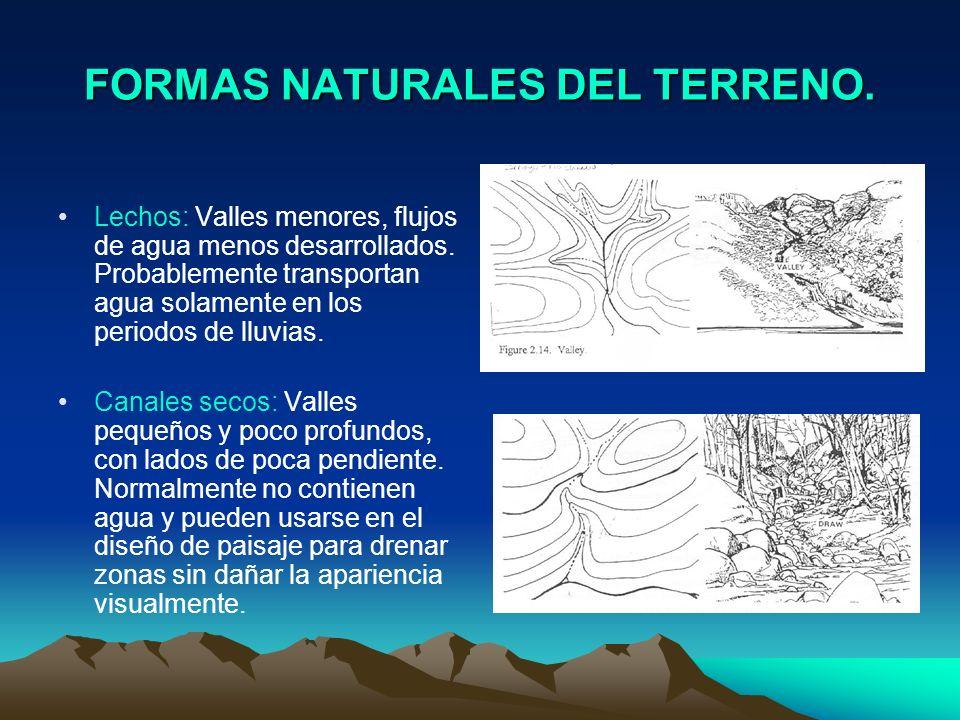 FORMAS NATURALES DEL TERRENO. Lechos: Valles menores, flujos de agua menos desarrollados. Probablemente transportan agua solamente en los periodos de