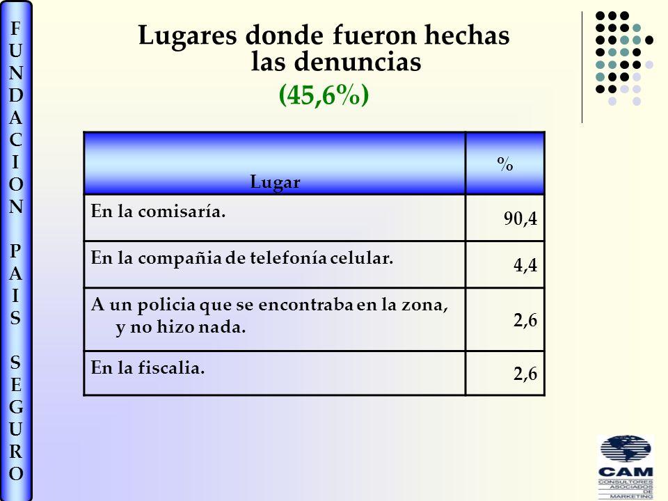 FUNDACIONPAISSEGUROFUNDACIONPAISSEGURO Lugares donde fueron hechas las denuncias (45,6%) Lugar % En la comisaría.