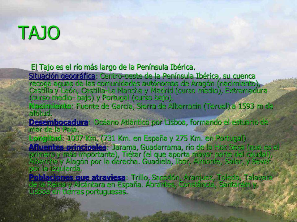 TAJO El Tajo es el río más largo de la Península Ibérica. El Tajo es el río más largo de la Península Ibérica. Situación geográfica: Centro-oeste de l