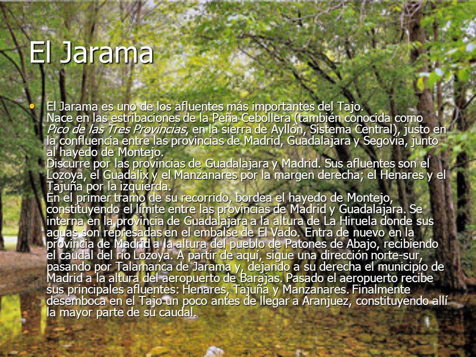 El Jarama El Jarama es uno de los afluentes más importantes del Tajo. Nace en las estribaciones de la Peña Cebollera (también conocida como Pico de la
