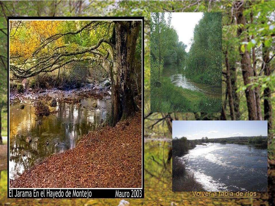 Volver a tabla de ríos Volver a tabla de ríos