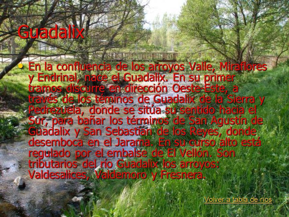 Guadalix En la confluencia de los arroyos Valle, Miraflores y Endrinal, nace el Guadalix. En su primer tramos discurre en dirección Oeste-Este, a trav