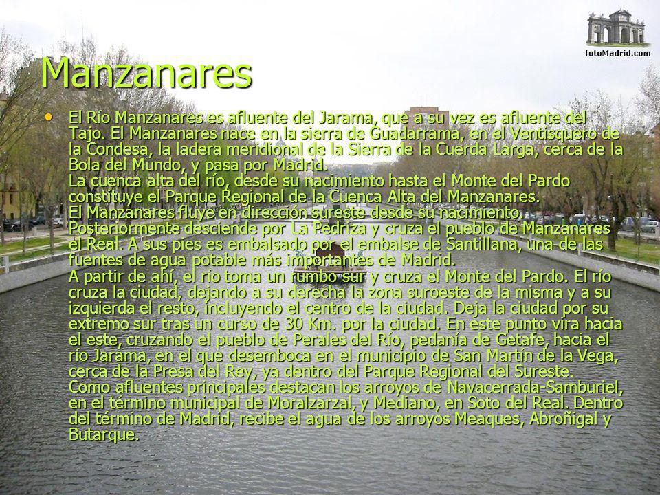 Manzanares El Río Manzanares es afluente del Jarama, que a su vez es afluente del Tajo. El Manzanares nace en la sierra de Guadarrama, en el Ventisque