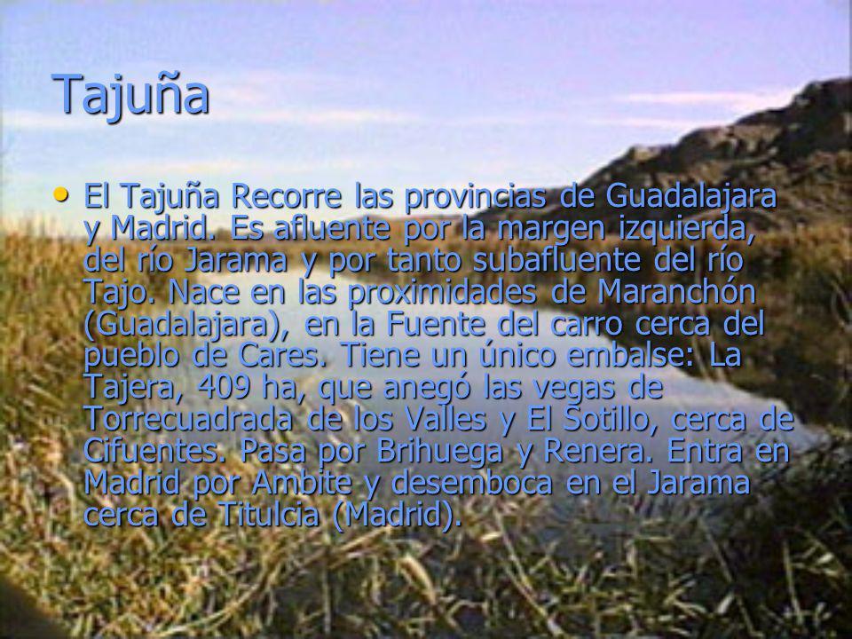 Tajuña El Tajuña Recorre las provincias de Guadalajara y Madrid. Es afluente por la margen izquierda, del río Jarama y por tanto subafluente del río T