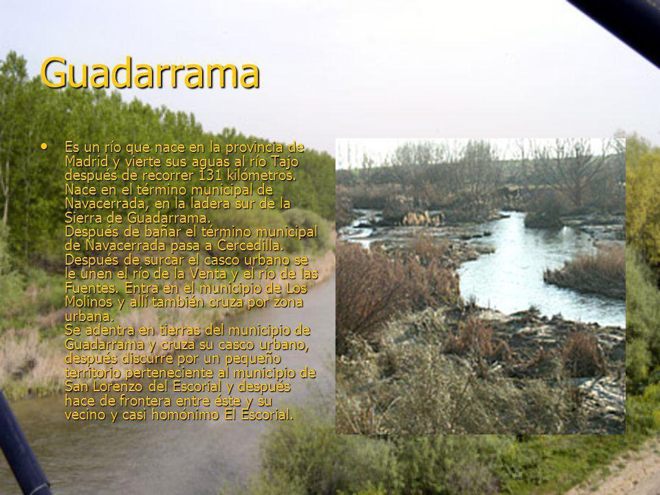 Guadarrama Es un río que nace en la provincia de Madrid y vierte sus aguas al río Tajo después de recorrer 131 kilómetros. Nace en el término municipa