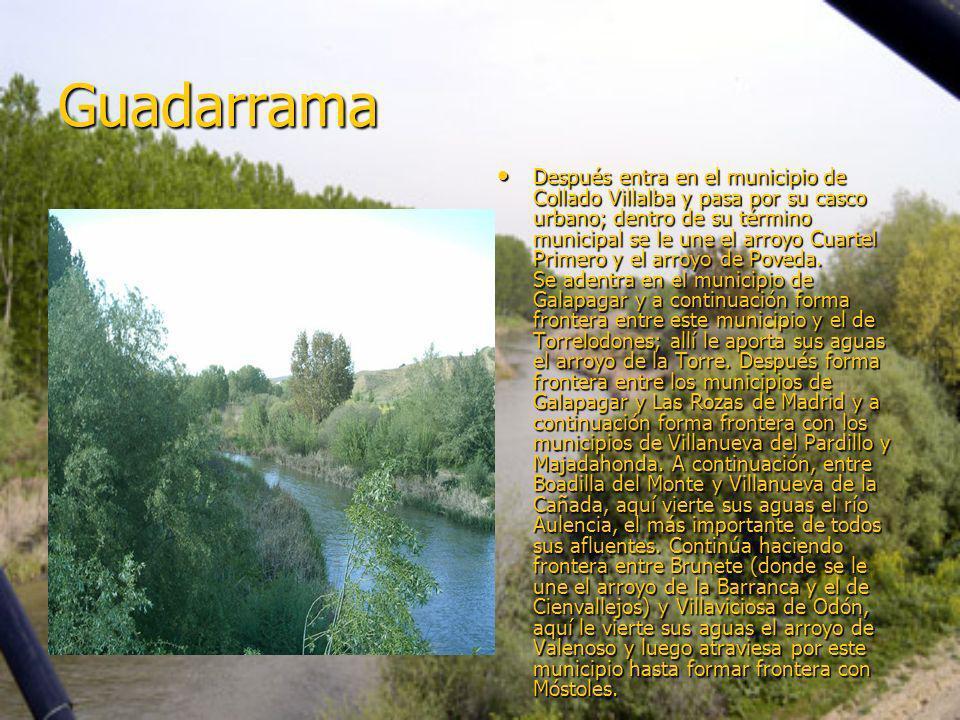 Guadarrama Después entra en el municipio de Collado Villalba y pasa por su casco urbano; dentro de su término municipal se le une el arroyo Cuartel Primero y el arroyo de Poveda.