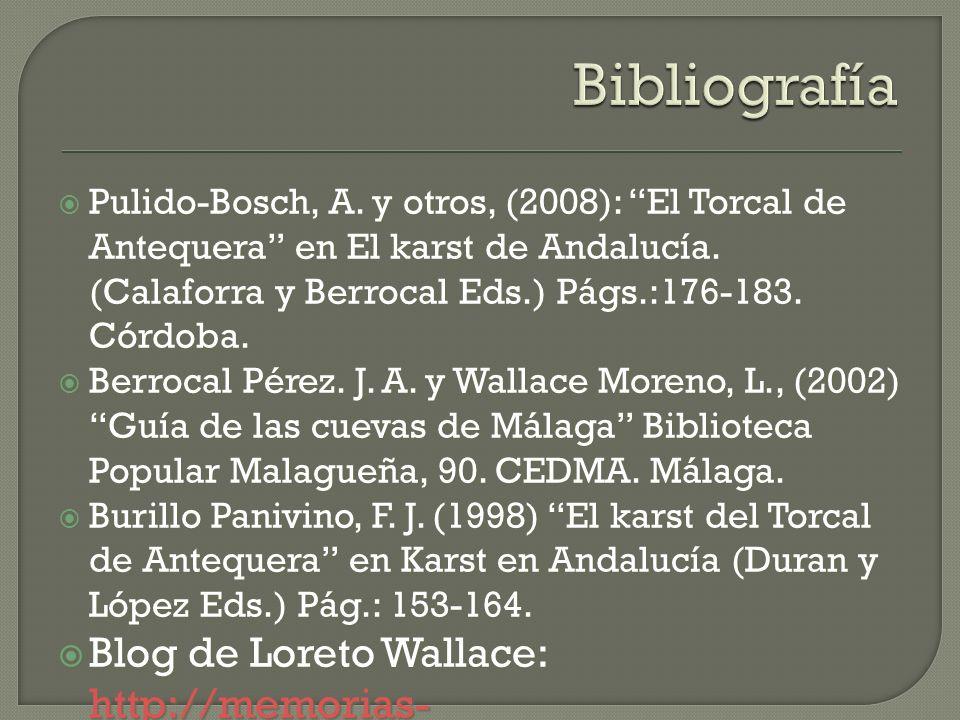 Pulido-Bosch, A. y otros, (2008): El Torcal de Antequera en El karst de Andalucía. (Calaforra y Berrocal Eds.) Págs.:176-183. Córdoba. Pulido-Bosch, A