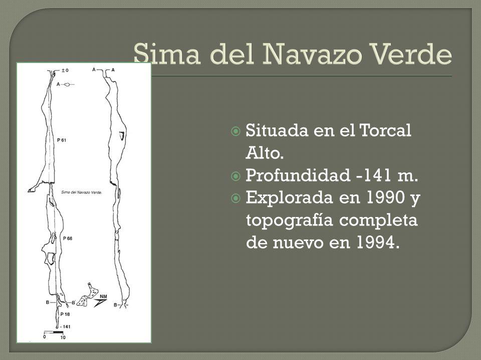 Sima del Navazo Verde Situada en el Torcal Alto. Profundidad -141 m. Explorada en 1990 y topografía completa de nuevo en 1994.