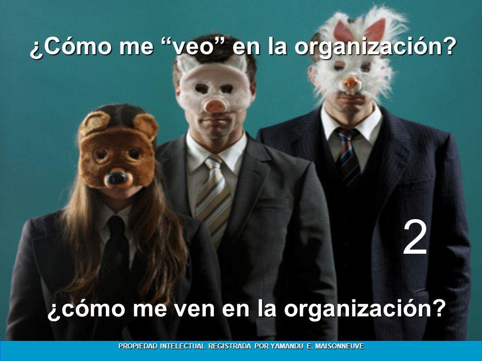 PROPIEDAD INTELECTUAL REGISTRADA POR YAMANDU E. MAISONNEUVE ¿Cómo me veo en la organización? ¿cómo me ven en la organización? 2