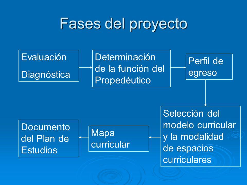 Fases del proyecto Evaluación Diagnóstica Determinación de la función del Propedéutico Perfil de egreso Selección del modelo curricular y la modalidad