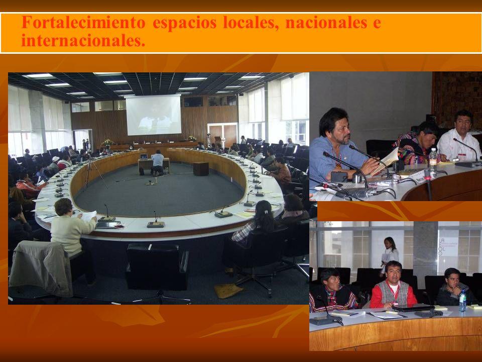 Fortalecimiento espacios locales, nacionales e internacionales.
