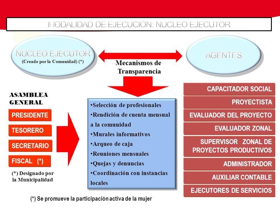 ASAMBLEAGENERAL FISCAL (*) PRESIDENTE TESORERO SECRETARIO (*) Designado por la Municipalidad (*) Se promueve la participación activa de la mujer PROYE