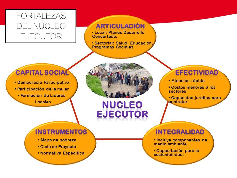 Local: Planes Desarrollo Concertado. Sectorial: Salud, Educación, Programas Sociales Democracia Participativa Participación de la mujer Formación de L