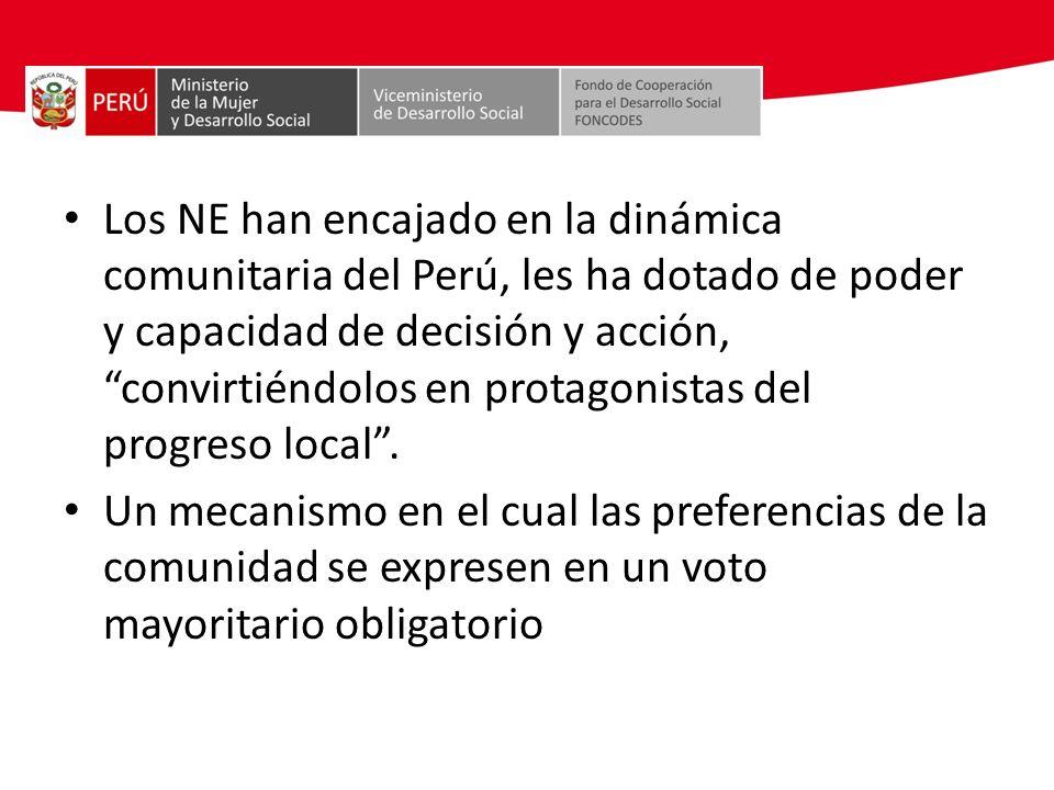 Los NE han encajado en la dinámica comunitaria del Perú, les ha dotado de poder y capacidad de decisión y acción, convirtiéndolos en protagonistas del