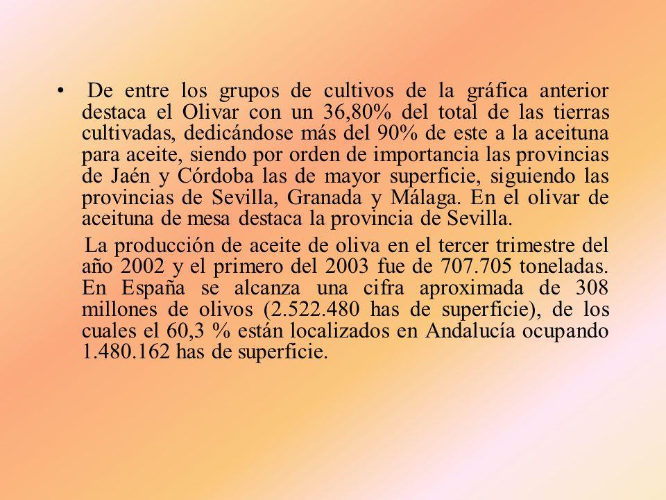 DISTRIBUCIÓN DE LA SUPERFICIE AGRÍCOLA OCUPADA POR GRUPOS DE CULTIVOS SUPERFICIES (HAS) DEL PERÍODO 1.989/98 GRUPO DE CULTIVOMEDIA% S/TOTALMAXIMOMINIM