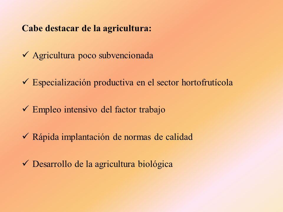 El grupo de las leguminosas grano, con el 2,36% de la superficie total cultivada, esta representado, por orden de importancia, por los garbanzos, los