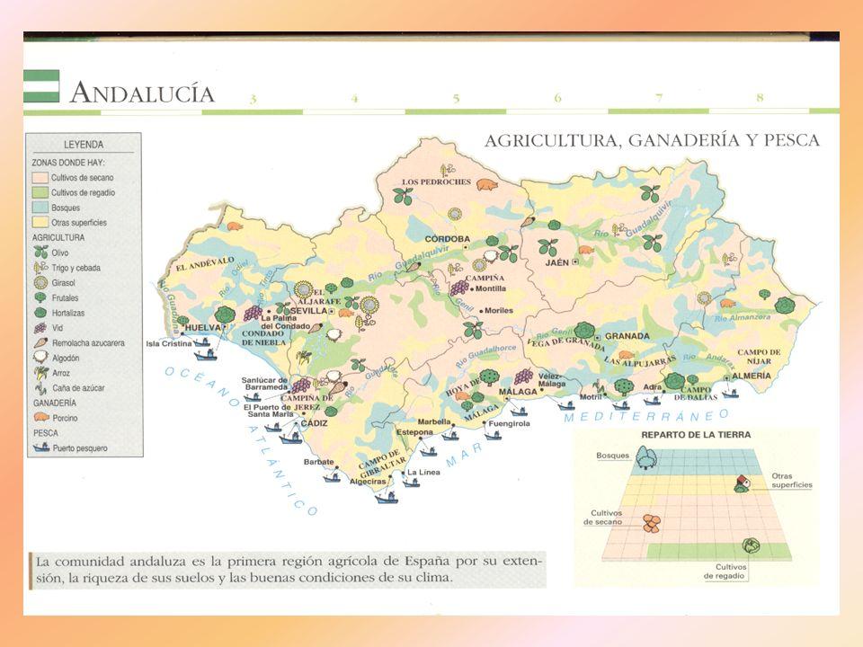 - La actividad ganadera Actividad tradicional basada en la coexistencia de diversas especies ganaderas en el mismo ámbito.