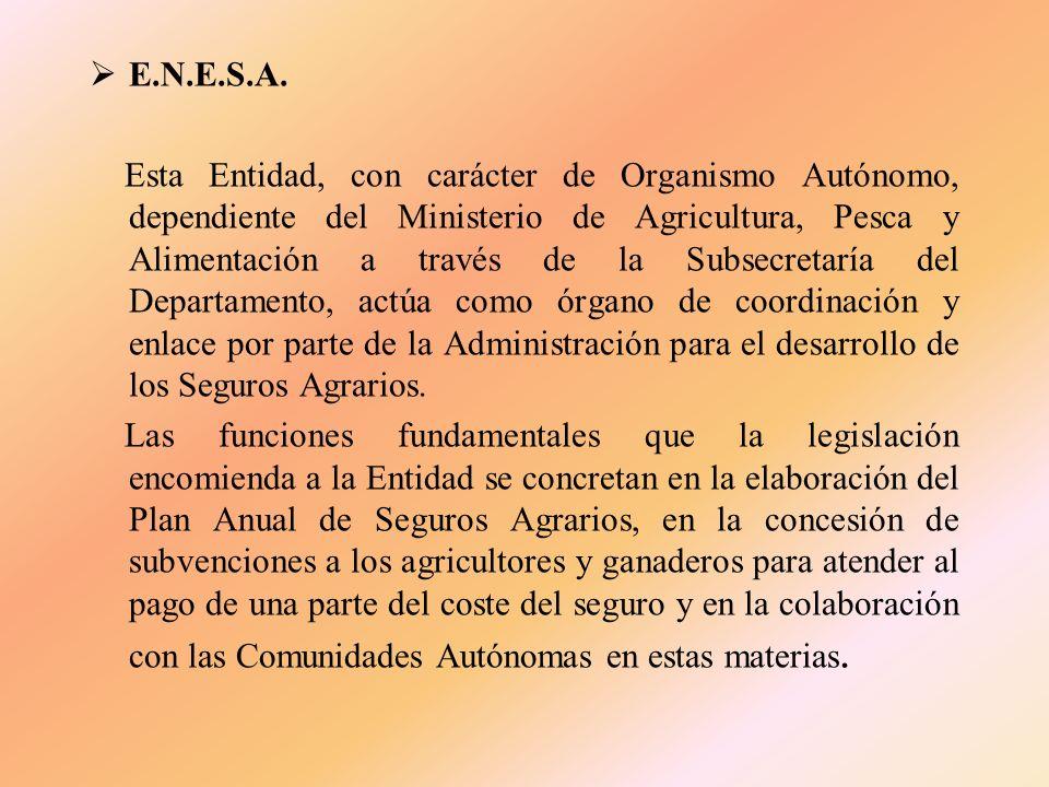 M.A.P.A. El Ministerio de Agricultura, Pesca y Alimentación es el departamento de la Administración General del Estado encargado de la propuesta y eje
