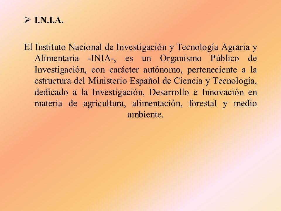 F.E.G.A. El FONDO ESPAÑOL DE GARANTIA AGRARIA (FEGA), es el organismo encargado, a nivel estatal, de mantener las relaciones con la Unión Europea a fi