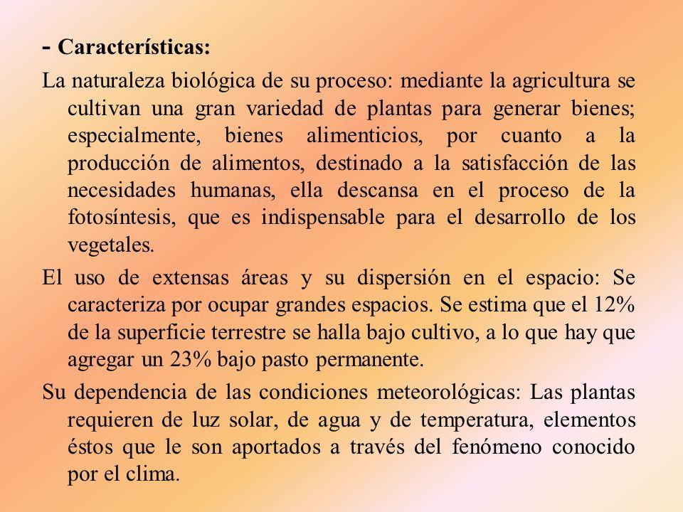 2. ACTIVIDADES A). LA AGRICULTURA Son aquellas que integran el llamado sector agrícola. Todas las actividades económicas que abarca dicho sector (exce