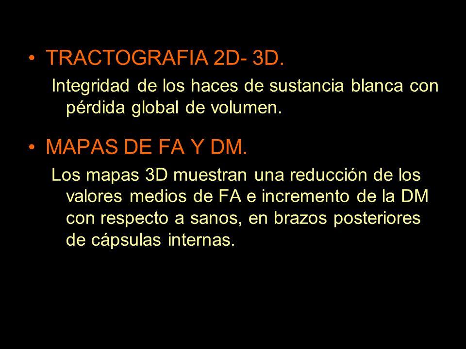 TRACTOGRAFIA 2D- 3D. Integridad de los haces de sustancia blanca con pérdida global de volumen. MAPAS DE FA Y DM. Los mapas 3D muestran una reducción