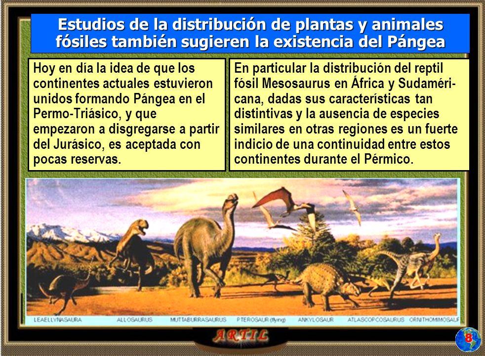 Hoy en día la idea de que los continentes actuales estuvieron unidos formando Pángea en el Permo-Triásico, y que empezaron a disgregarse a partir del Jurásico, es aceptada con pocas reservas.