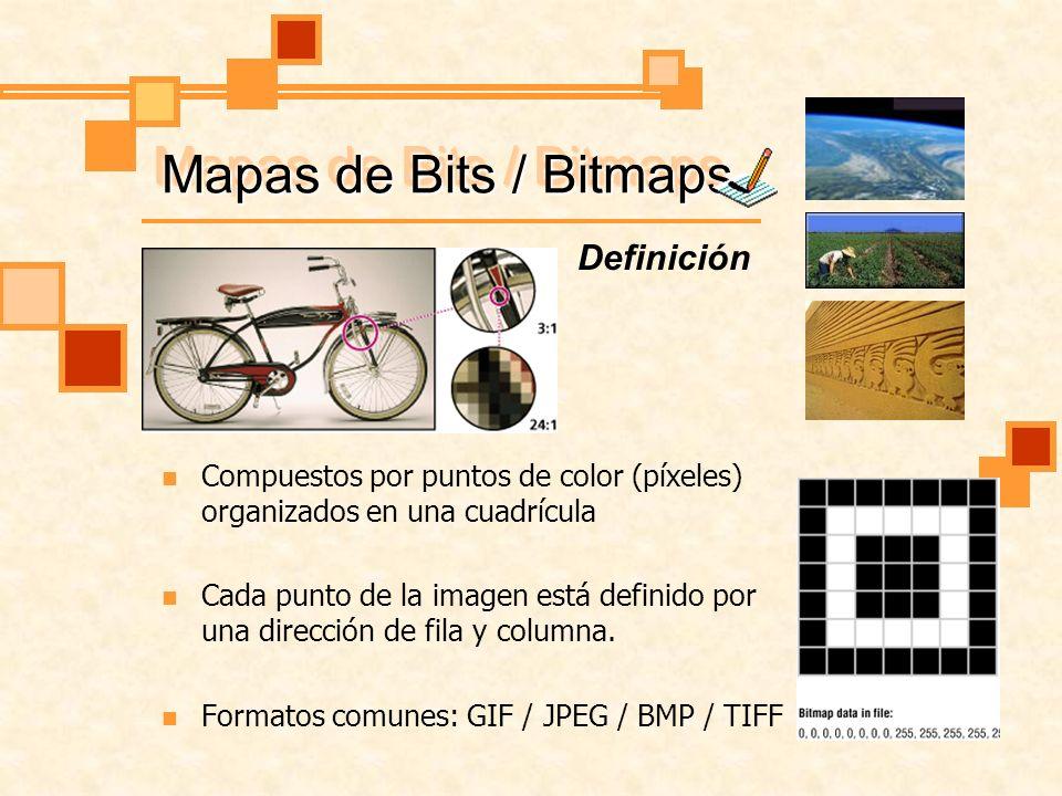 Mapas de Bits / Bitmaps Definición Compuestos por puntos de color (píxeles) organizados en una cuadrícula Cada punto de la imagen está definido por una dirección de fila y columna.