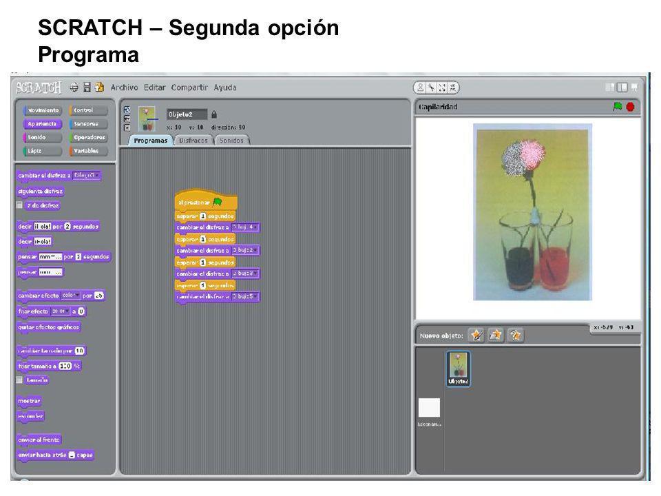 SCRATCH – Segunda opción Programa
