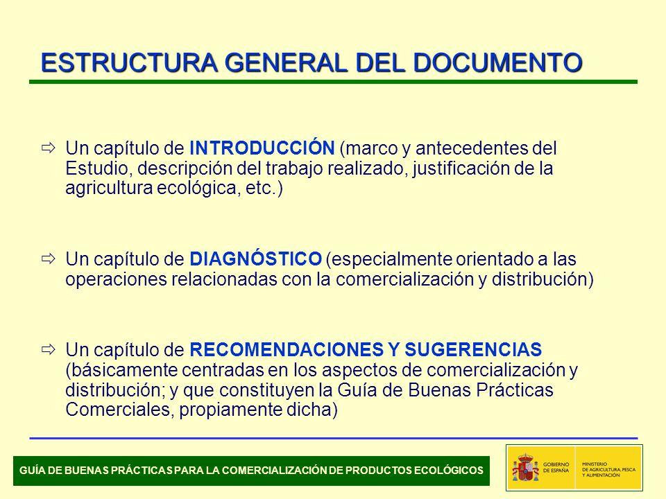 ESTRUCTURA GENERAL DEL DOCUMENTO Un capítulo de INTRODUCCIÓN (marco y antecedentes del Estudio, descripción del trabajo realizado, justificación de la