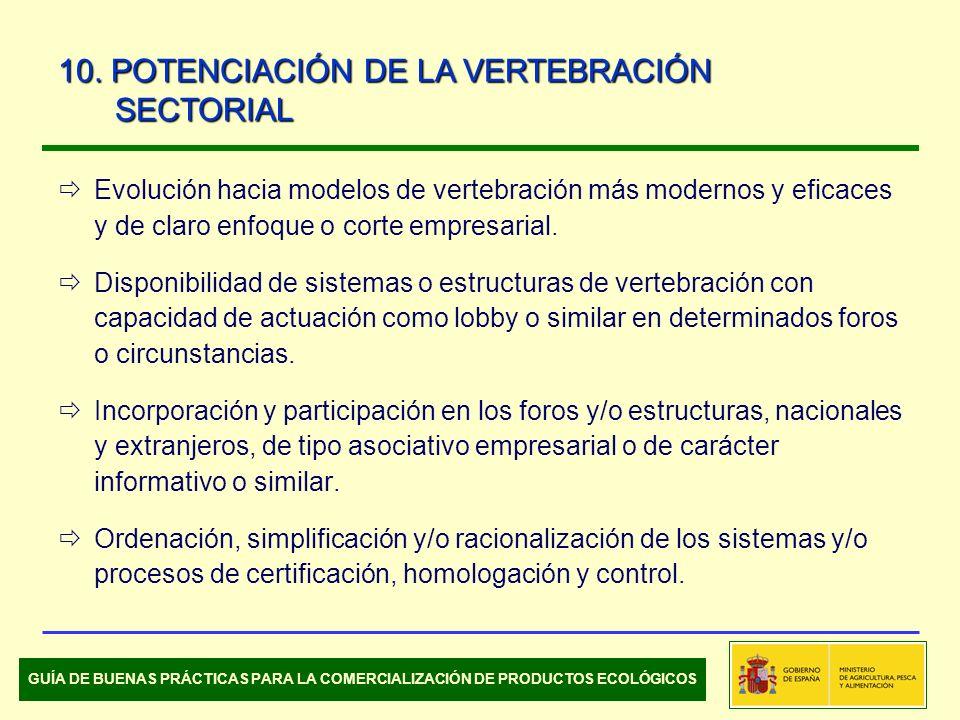 Evolución hacia modelos de vertebración más modernos y eficaces y de claro enfoque o corte empresarial.
