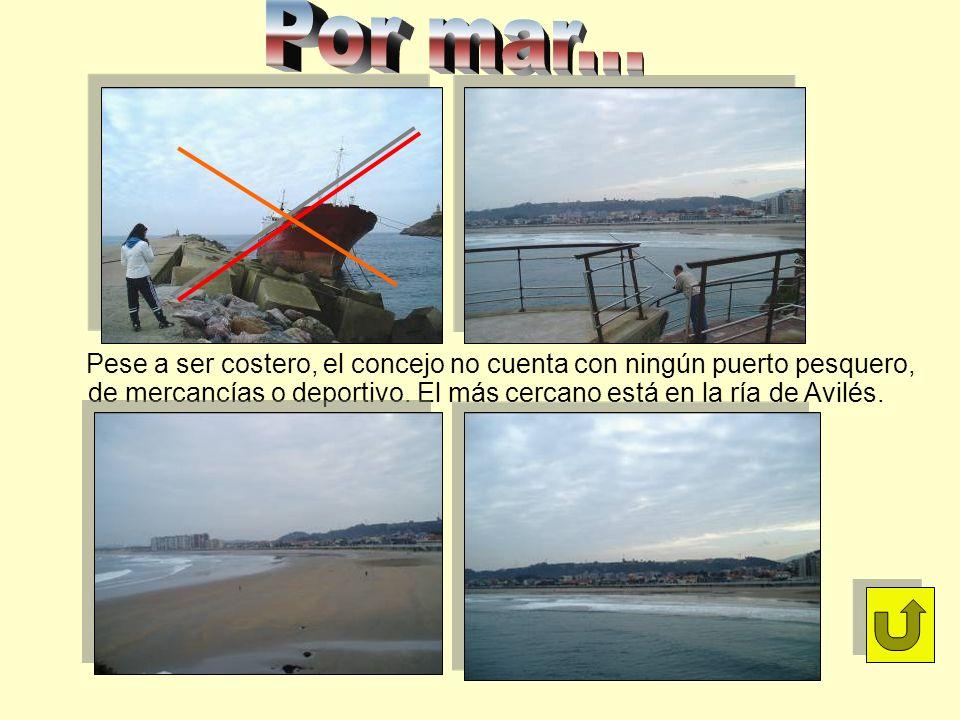 Pese a ser costero, el concejo no cuenta con ningún puerto pesquero, de mercancías o deportivo. El más cercano está en la ría de Avilés.
