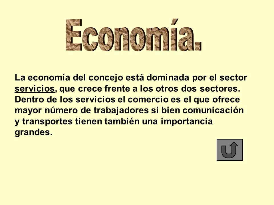 La economía del concejo está dominada por el sector servicios, que crece frente a los otros dos sectores. Dentro de los servicios el comercio es el qu
